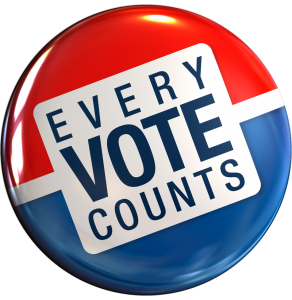 Image result for voter preparation
