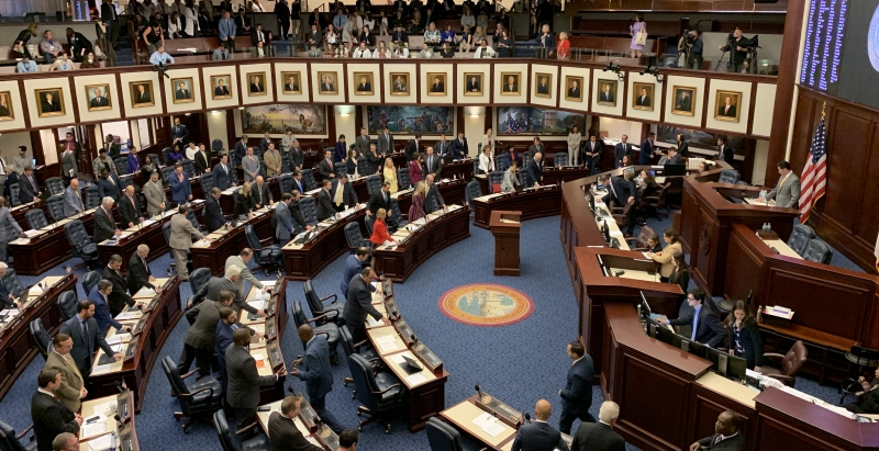 Florida House of Representative